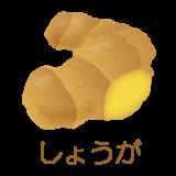 shouga_p